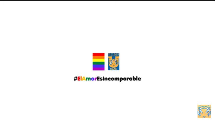 Tigres manda apoyo a la comunidad LGBT mediante un video